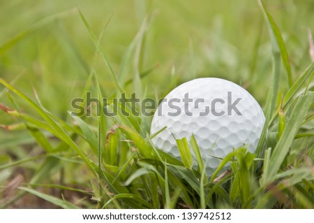 white golfball on the green grass field - stock photo