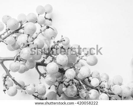 White grape (Vitis vinifera) fruits, healthy vegetarian food in black and white