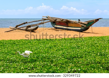 White heron seeking food on the beach with boat in the background - stock photo
