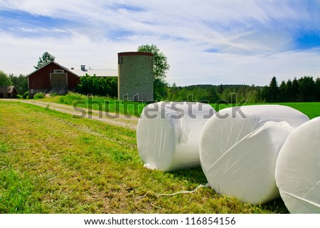 White hey bales and grass with blue cloudy sky