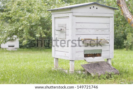 white hive in the garden