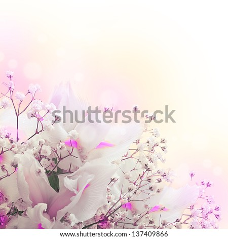 White irises against a green grass, a summer butterfly - stock photo