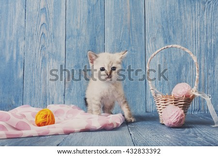White kitten with pink wool ball and straw basket. Playful white kitten. Sweet adorable kitten on a serenity blue wood background. Small cat. Funny kitten with copyspace - stock photo
