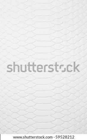 white leather texture ,snake skin texture - stock photo