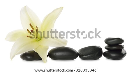 White lily and stones isolated on white background