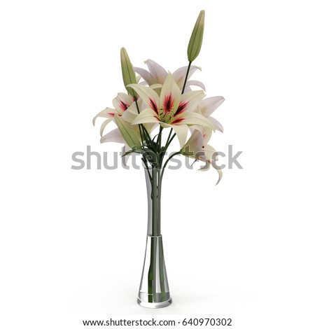 White Lily Vase On White 3 D Stock Illustration 640970302 Shutterstock
