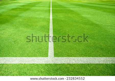 white lines of a playing field - stock photo