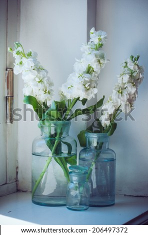 White matthiola flowers in vintage glass bottles on a windosill, floral home decor, interior details - stock photo