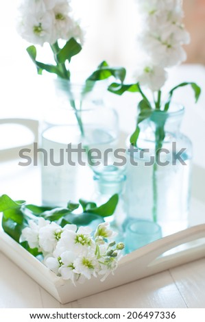 White matthiola flowers in vintage glass bottles vases on a wooden tray, summer home decoration, interior details - stock photo