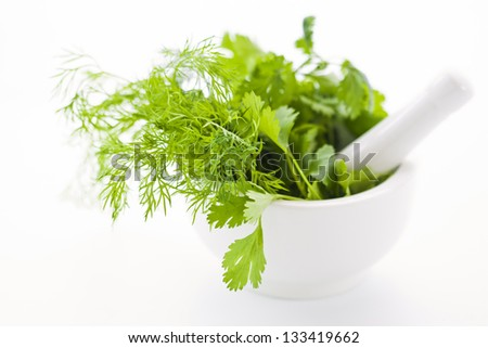 White mortar with fresh green herbs - stock photo