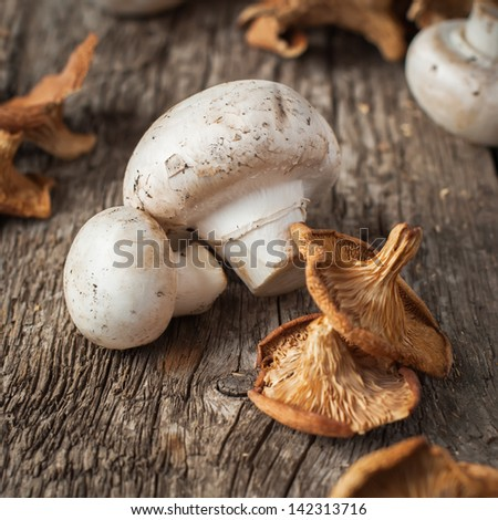 White Mushrooms and Dried Chanterelle, top view