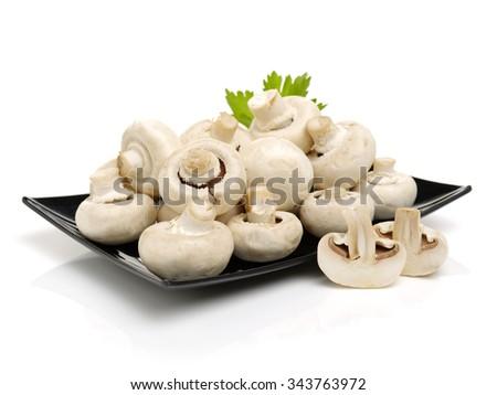 White mushrooms on white background - stock photo