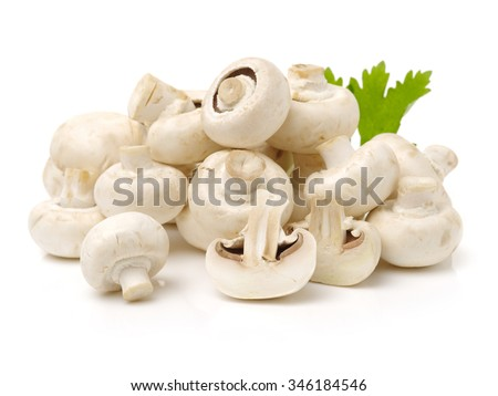 White mushrooms on white background - stock photo