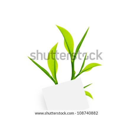 white note paper with paper clip and green leaves on white background.