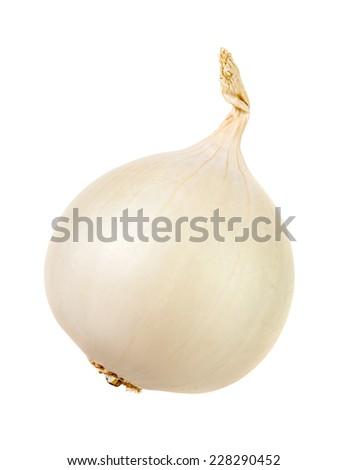White onion bulb isolated over white background - stock photo