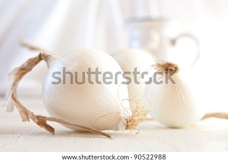 White onions still life. shallow DOF. - stock photo