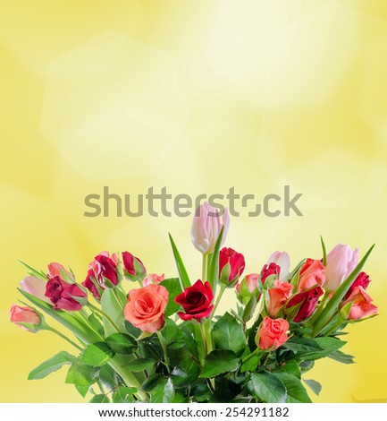 White, orange, red and yellow roses flowers, bouquet, floral arrangement, white background, isolated.