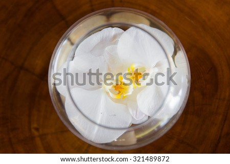 White orchid flower in glass vase with water on wooden background.