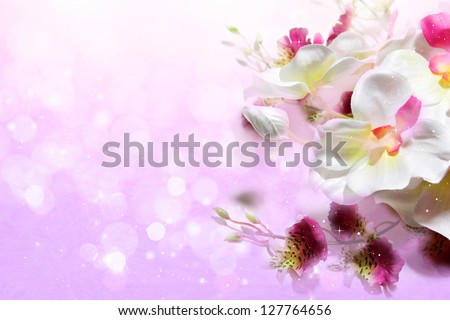 white orchids on a pale blue background