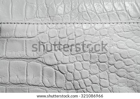 White pearl texture of reptile skin with seams and edges. Useful as a background - stock photo