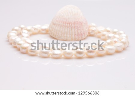 White pearls and a shell on the white background.