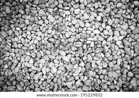 White pebble background texture with fine detail - stock photo