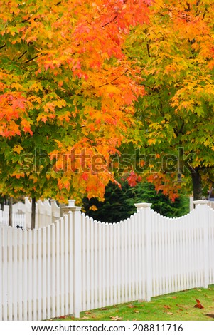 White picket fence and a maple tree during fall foliage season, Stowe Vermont, USA - stock photo