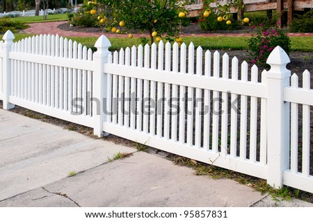 White picket fence and orange trees