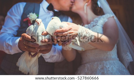 white pigeons in hands of bride