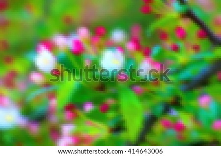 White-pink flowers blooming shrub springtime. Natural background for background and text. Blooming spring tree branch background. Blurry abstract background