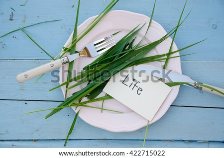 white plate fork knife and grass
