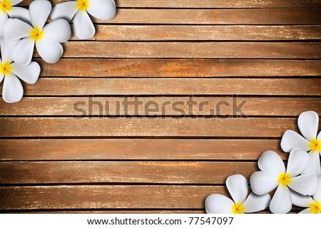 White plumeria flower on Wood Pattern - stock photo