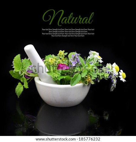 White porcelain mortar and pestle with fresh herbs on black background - stock photo