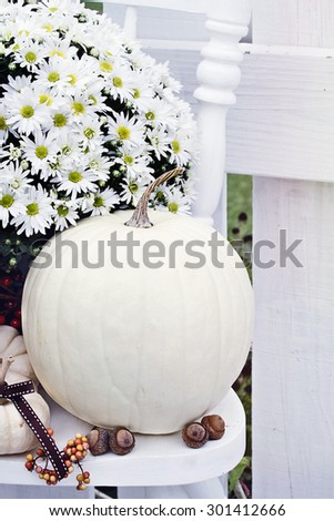 White pumpkins and mums sitting outdoors on an old white chair. - stock photo