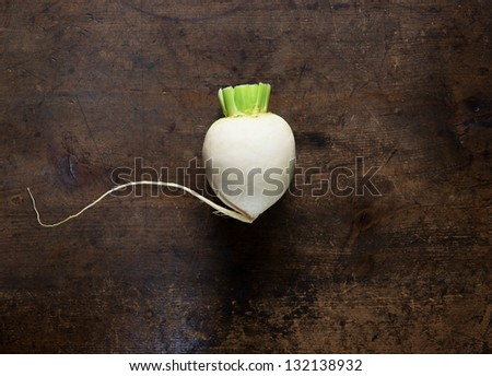 White radish on old wooden desk with, long center root still intact. - stock photo