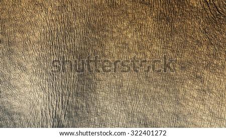 White Rhino Skin Texture Background Stock Photo 322741109