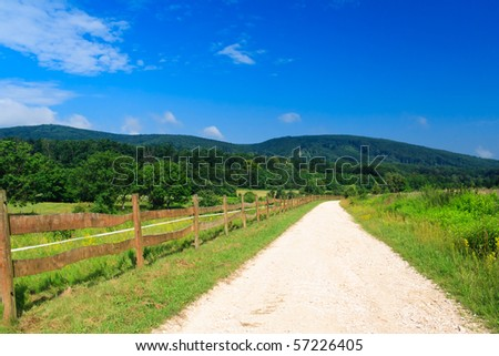white road with blue sky in a green forest - stock photo