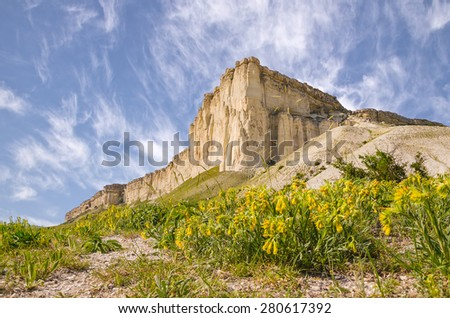 white rock and field of flowers in blossom