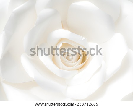 white rose - design paper closeup - stock photo