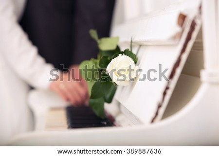 white rose on keys of a white grand piano and a loving couple against