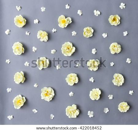 White roses (Burnet double white, shrub rose) and flowers viburnum on a gray background - stock photo