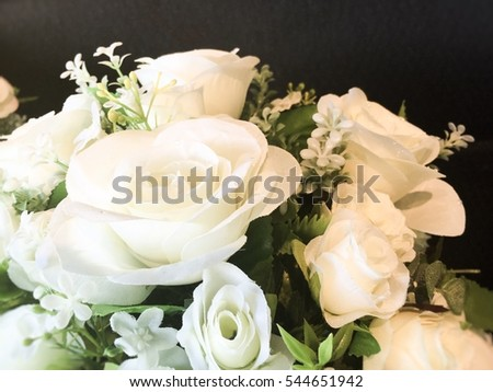 White roses in soft preset color and blurry for background.