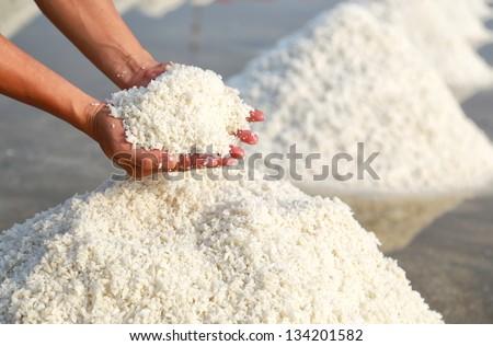 white salt in hands - stock photo