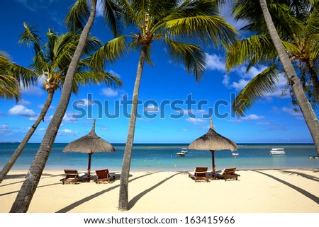 White sand beach and palm trees in Mauritius - stock photo