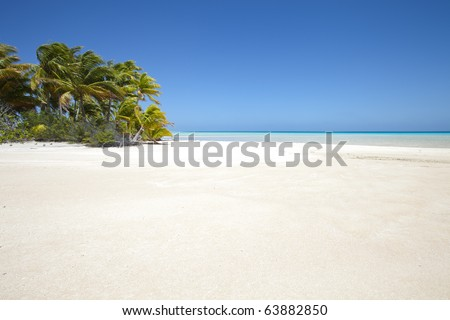 White sand beach front of palm tree and blue lagoon of a paradise island - stock photo