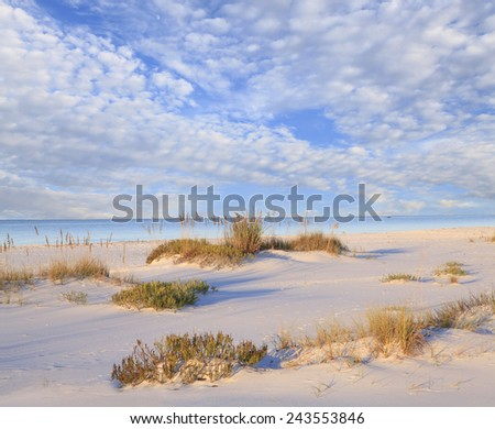White Sand Beach, Sea Oats and Beautiful Cloudy Sky - stock photo