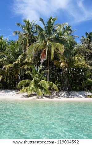 White sand beach with coconut trees and turquoise waters in the Zapatillas Keys islands, Bocas del Toro archipelago, Caribbean sea, Panama - stock photo