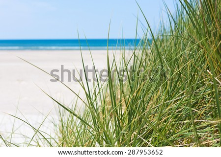 White sand, green grass, blue sea - stock photo