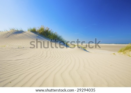white sand on the beach with dunes in summertime with a blue sky - stock photo