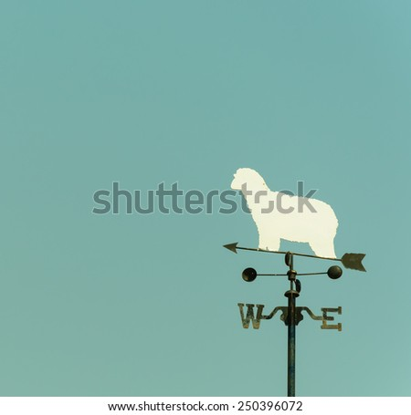 white sheep rooster weather vane in vintage color style - stock photo